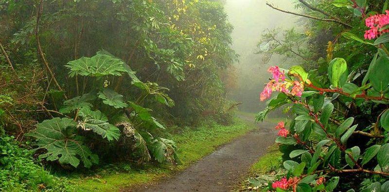 Los Mejores Lugares de Montaña de Costa Rica