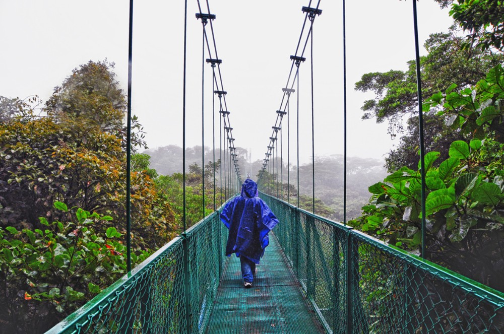 The rainy times of year in Monteverde are from June to the end of October - Monteverde, Costa Rica