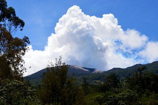 Laderas del Volcán Turrialba, zonas boscosas.